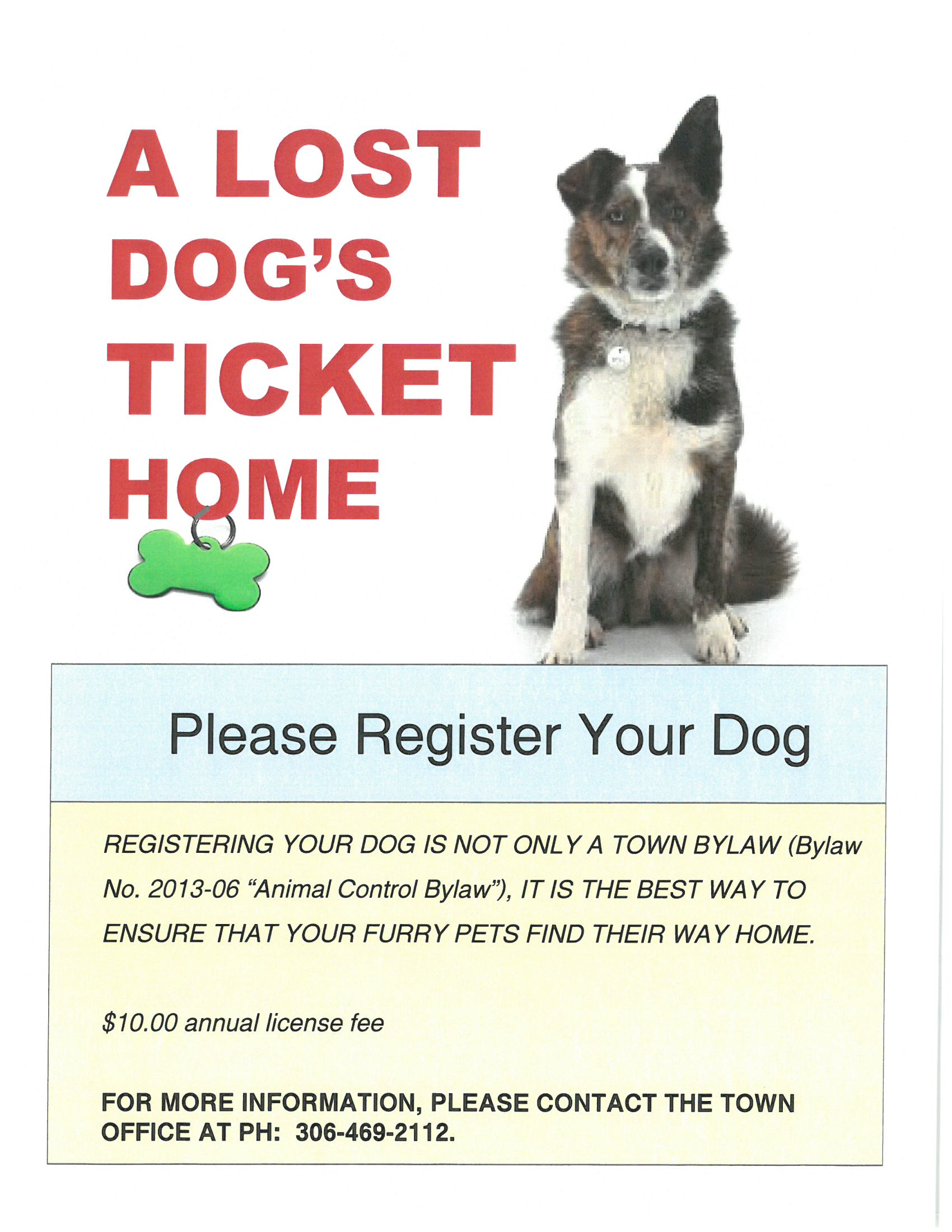 Dog Registration Poster